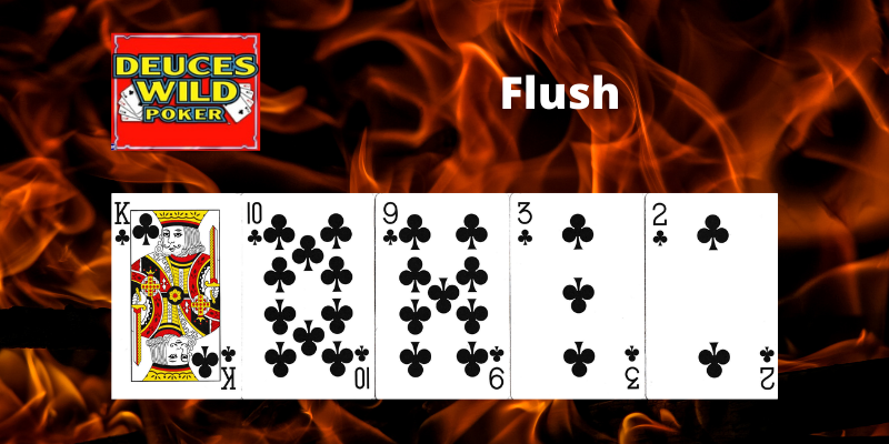 Flush - Deuces Wild Video pokeris