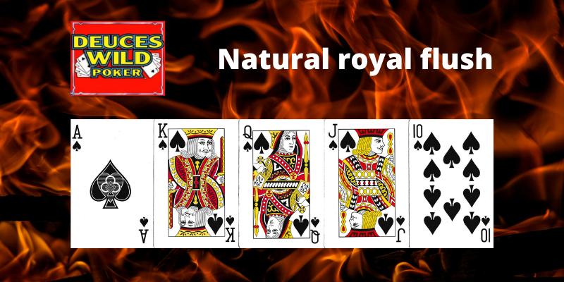 Natural royal flush - Deuces Wild Vaizdo pokeris