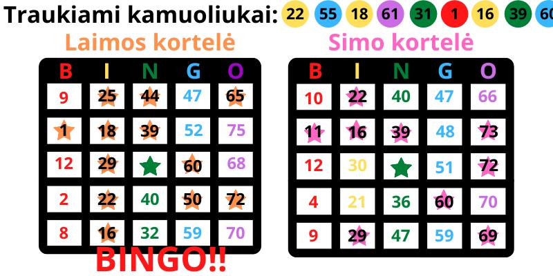 Azartiniai žaidimai namuose nemokamai Bingo su draugais - 1 pvz